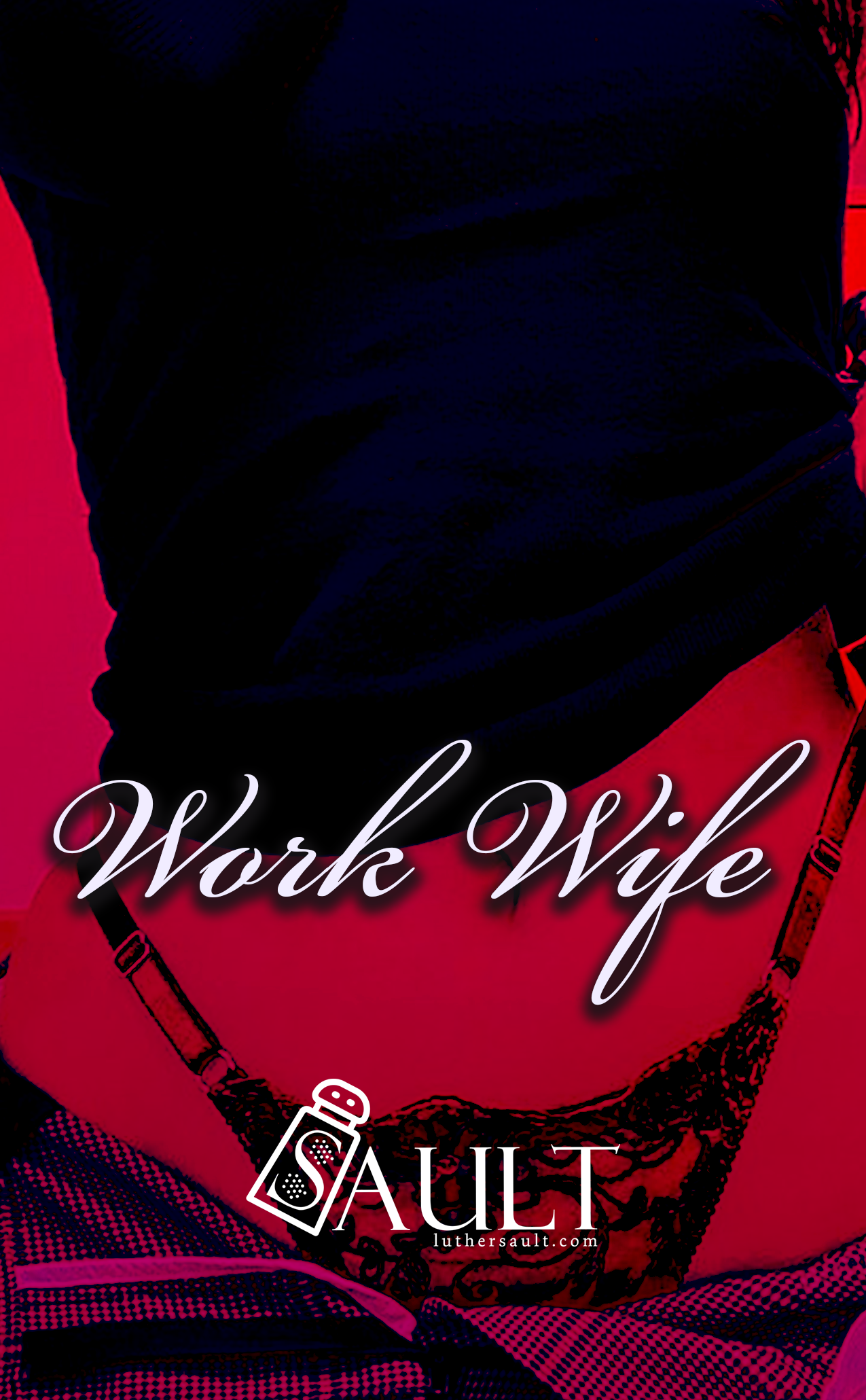 The Work Wife Official Story Cover 2